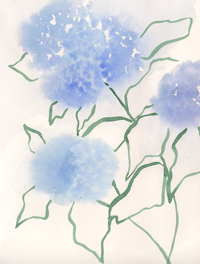 """HYDRANGEA I"" - Watercolor on Paper, 8"" x 10"""