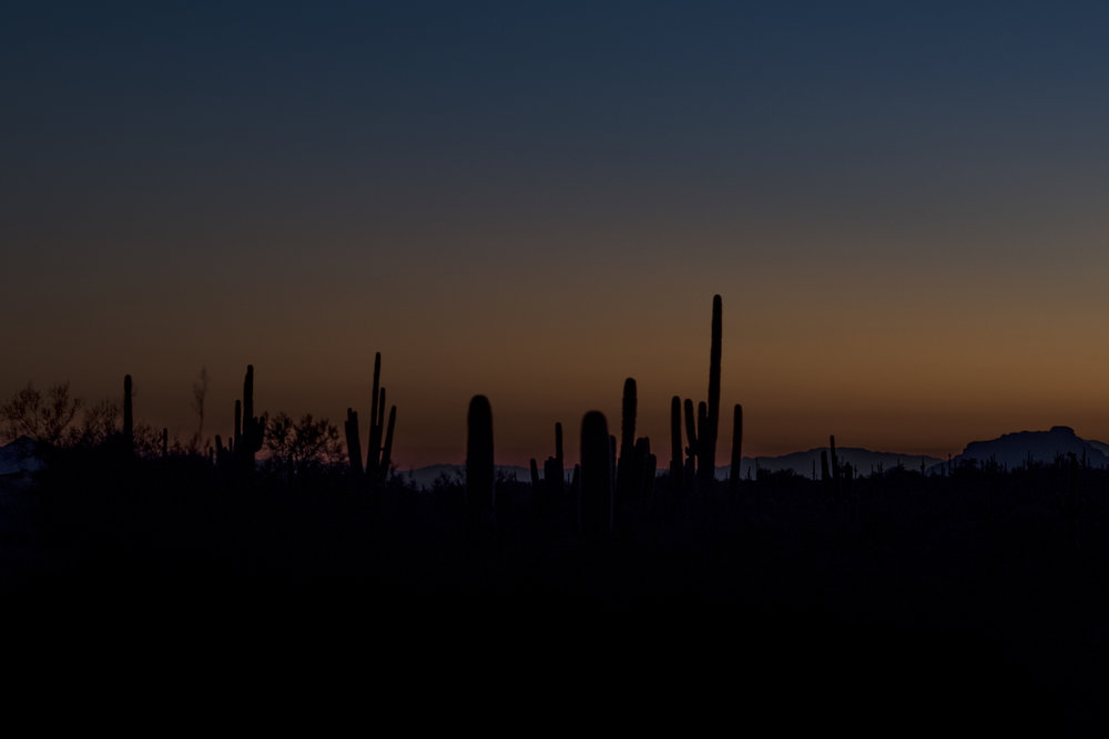 Dusk in the desert.