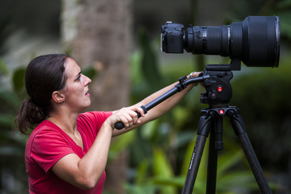 The early stages of DSLR video. A rare Nikkor 300mm f/2 on a Nikon D90 - the first DSLR to capture video - on a Manfrotto tripod with a fluid head.