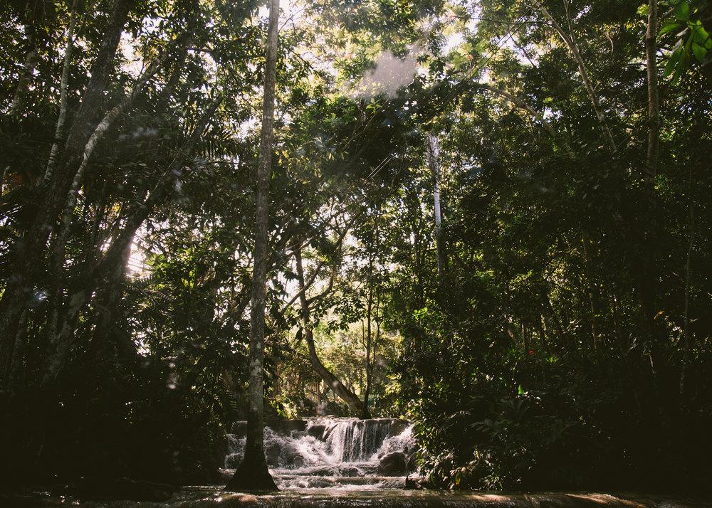 Travel Lifestyle | Travel Ideas | Inspiration | Travel Photography | Beach | Bucket List | Sledding | Dellany Elizabeth | Cayman Islands | Jamaica | Dunn River Falls | www.dellanyelizabeth.com