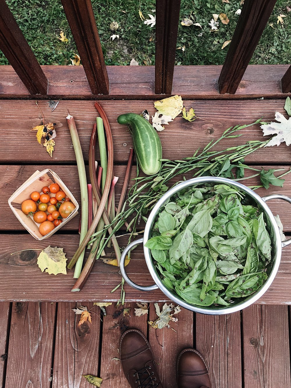 "THE ""LAST OF THE GARDEN"" HARVESTS FROM OUR 2017 SEASON. WE MADE A CELEBRATORY BATCH OF PESTO WITH THAT LOAD OF BASIL!"