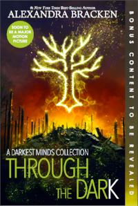 The darkest minds book series