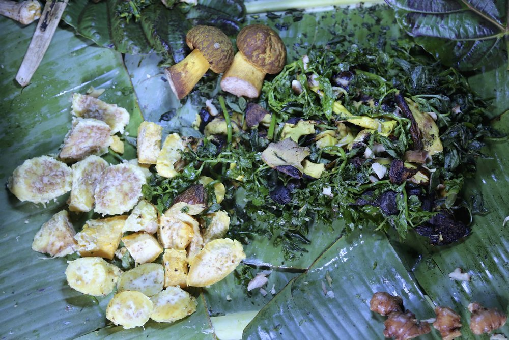 Wild mushrooms and sweet potatoes with bush ferns prepared in Solomon Islands