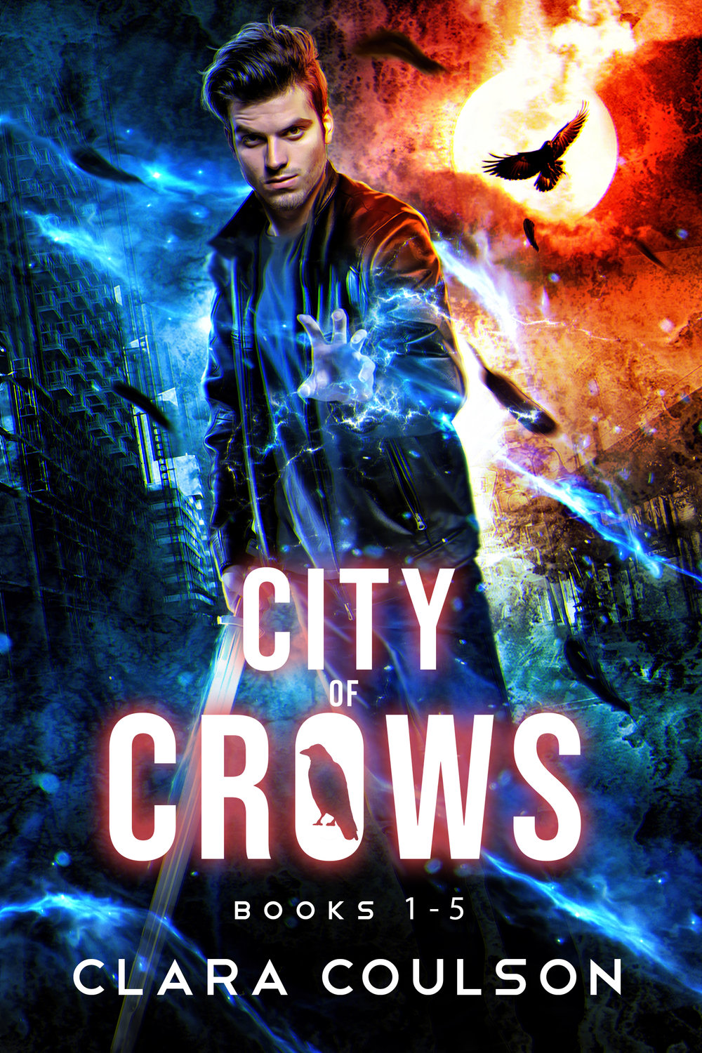 Boxset City of Crows.jpg