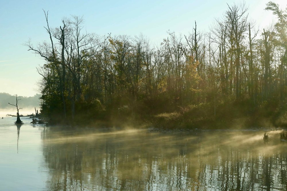 Mystic Ferry Ride II