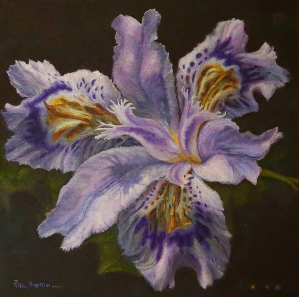 Granny's Iris