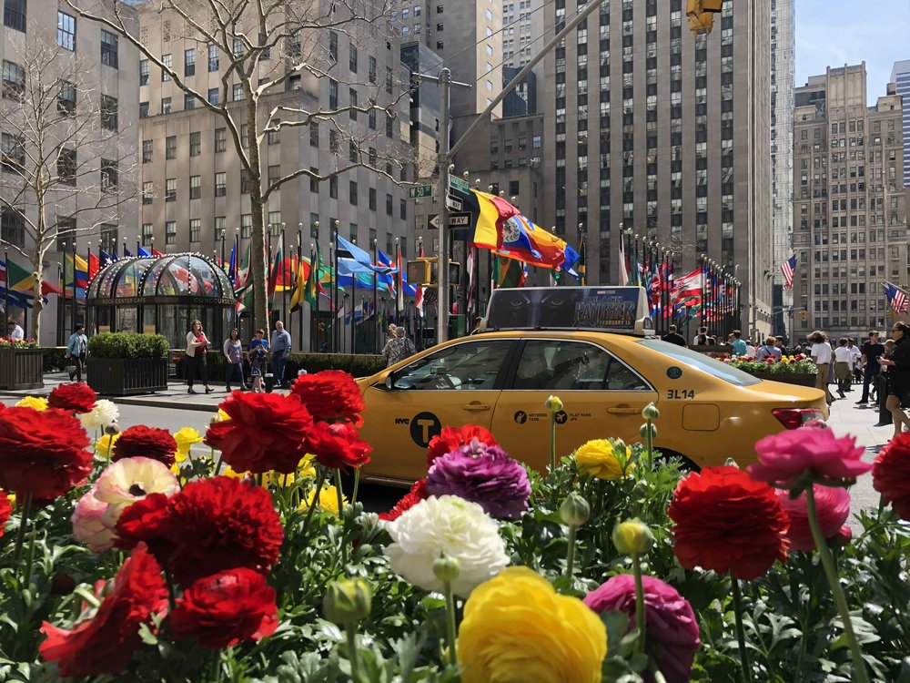 Springtime at Rockefeller Plaza