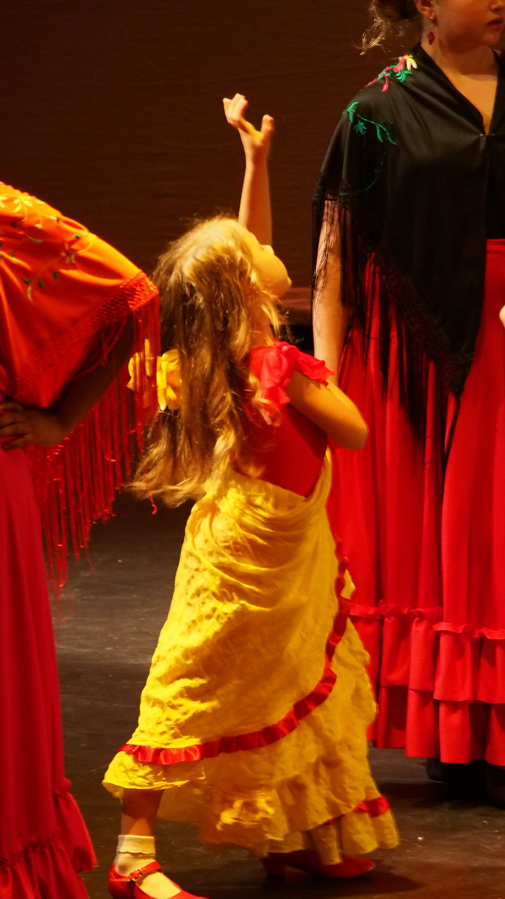 Flamenco little one yellow 2.JPG
