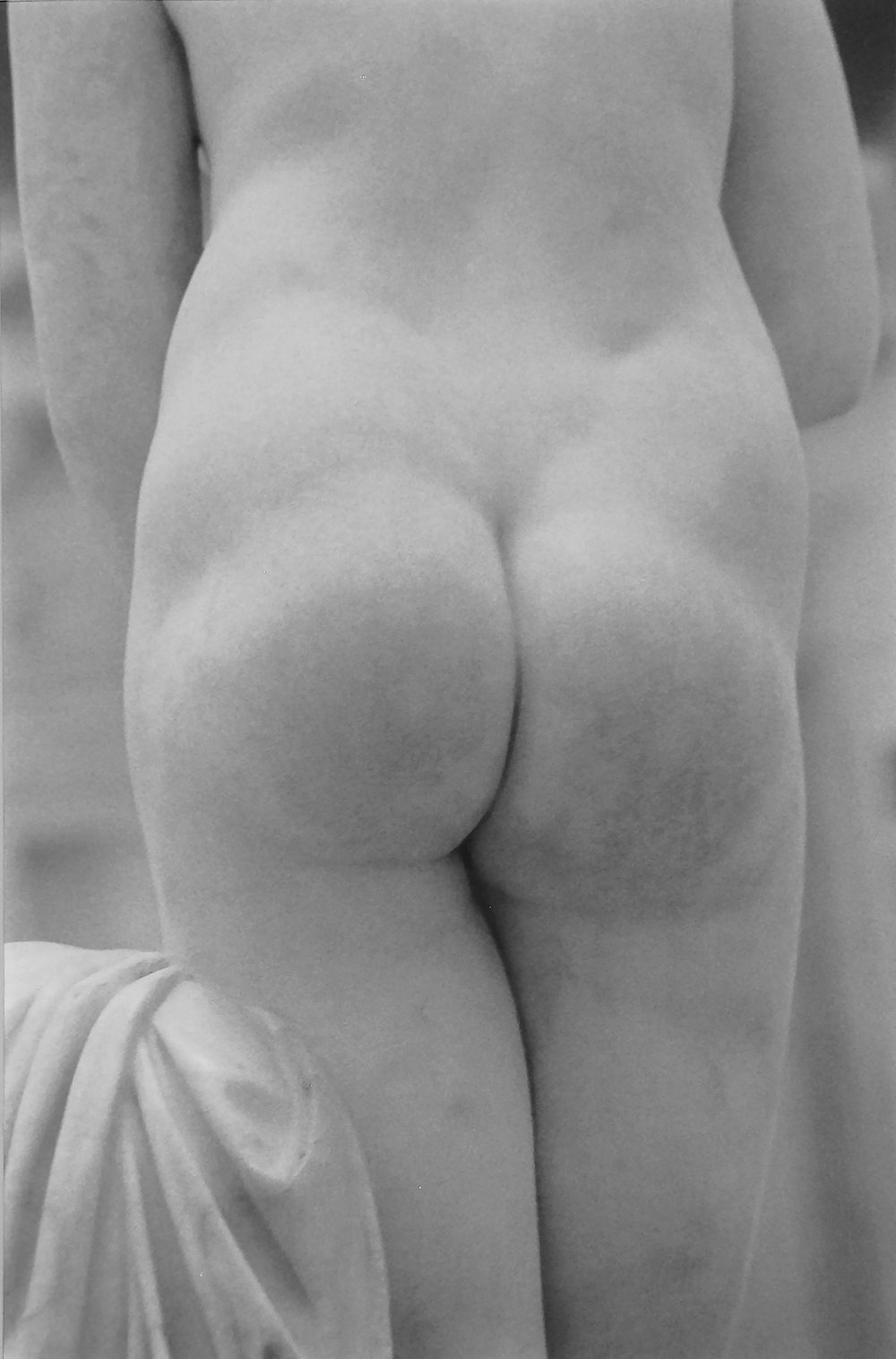 Venus' Bottom