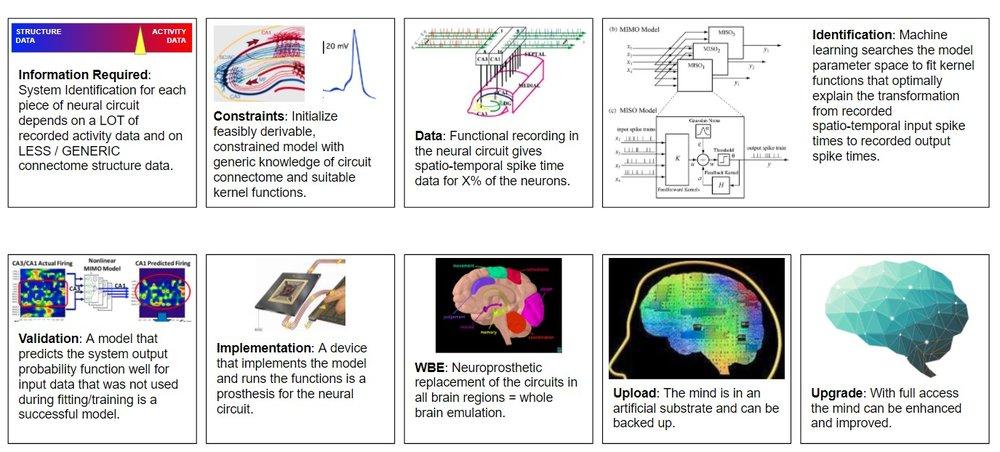 WBE-via-neural-prosthesis-20180407.jpg