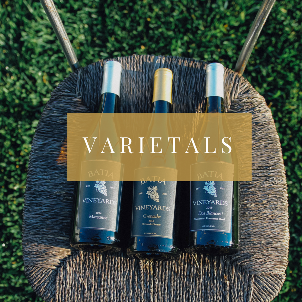 Learn About our Wines