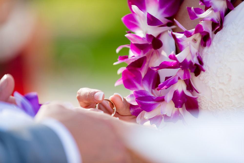 malloryroephoto.com-mango-wedding-9-2-2017-30419.jpg