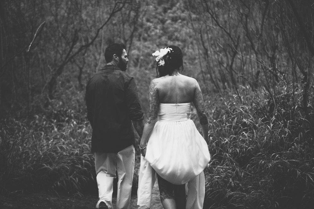 tasia_bryan_wedding_shipwreck_cliffs-3-78.jpg
