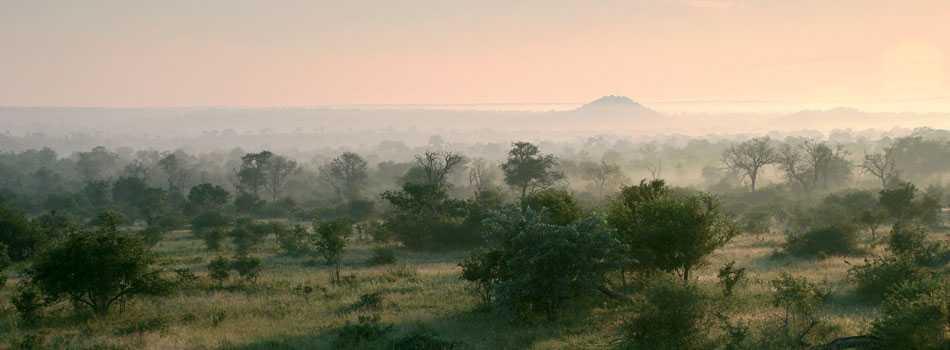 Vue panoramique Londolozi