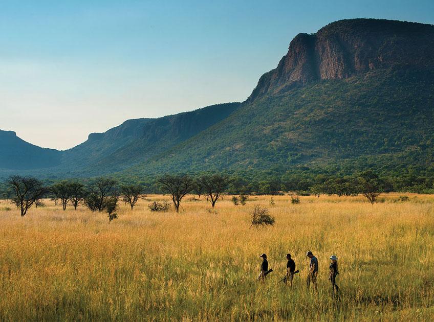 Safaris à pied ambiance Jurassique Parc - Marche à Marataba