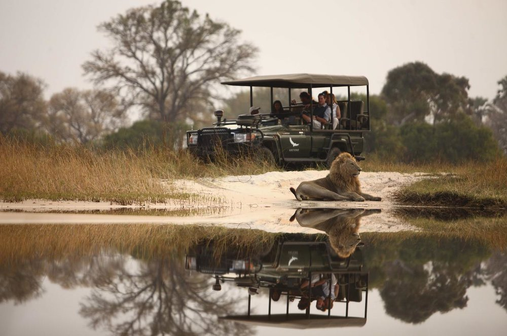 4X4 Safari Sandibe Safari Lodge