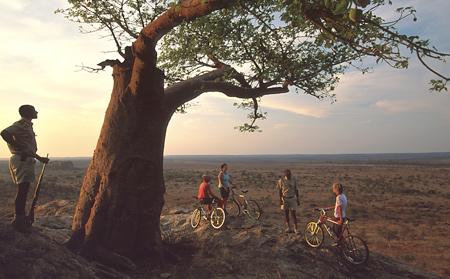 Rafraîchissement dans la brousse Mashatu