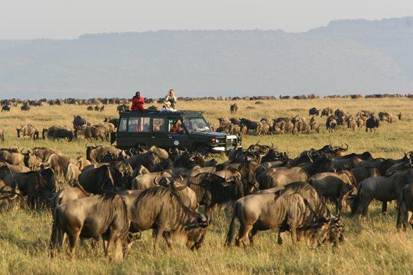 Safari en 4X4 Rekero Mara Camp