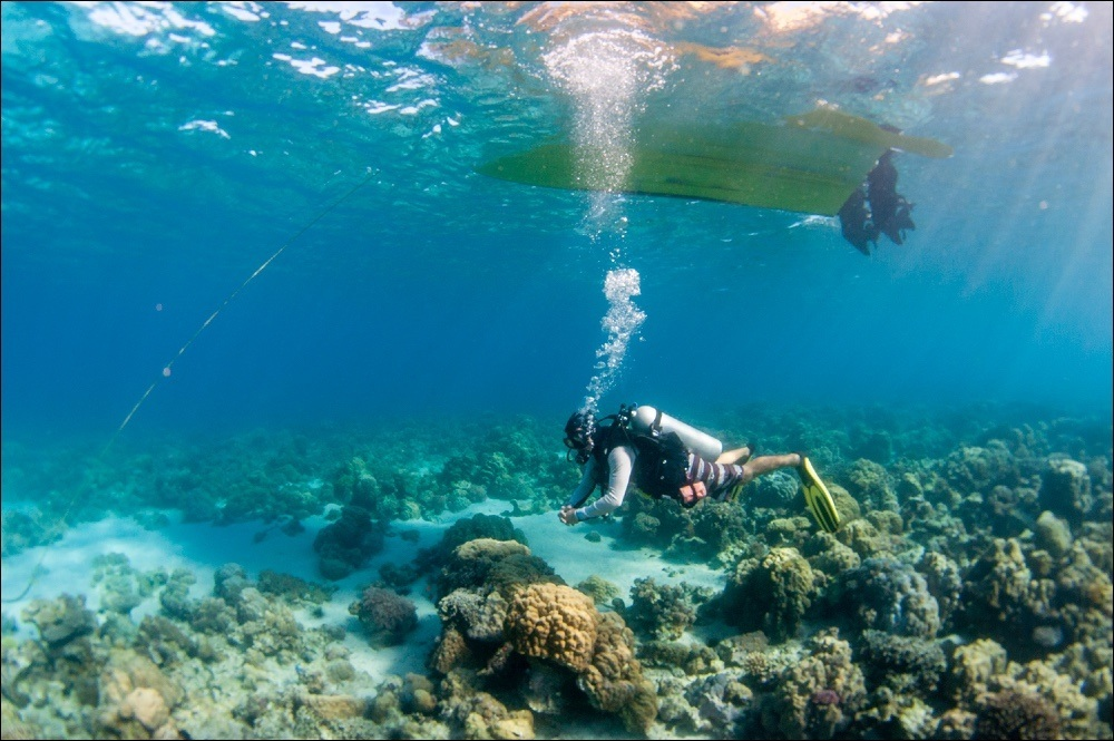 Plongée Nuarro