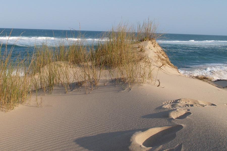 Dunes Les Dunes de Donvella