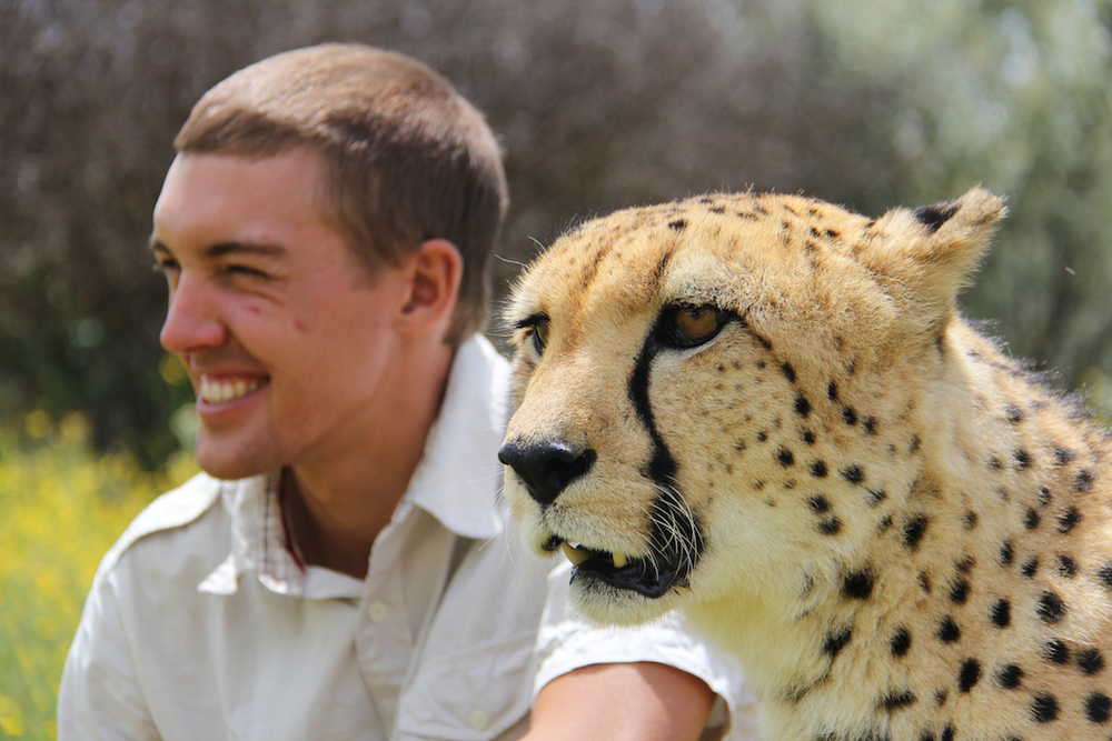 Rencontre avec un guépard de Naankuse