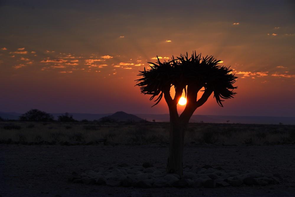 Magnifique Coucher de Soleil Hoodia Desert Lodge