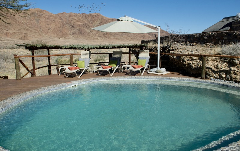 Piscine Hoodia Desert Lodge