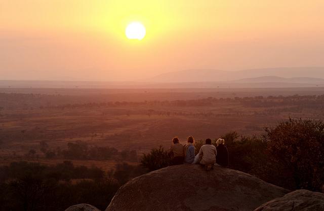 Vue panoramique Nomad Lamai Serengeti