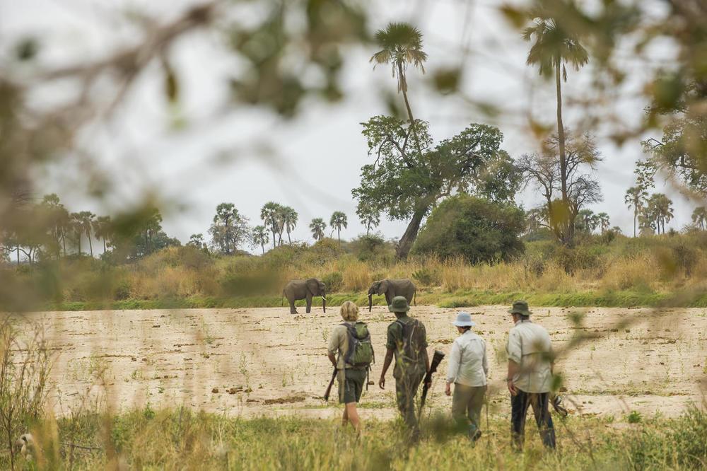 Safari à pieds Kwihala Camp
