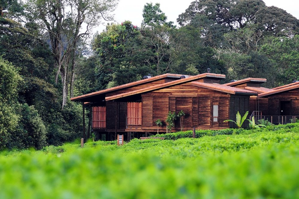 Vue extérieure Nyungwe Forest Lodge