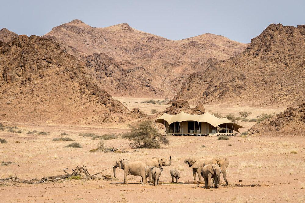 Famille d'éléphants du désert devant Hoanib Skeleton Coast Camp
