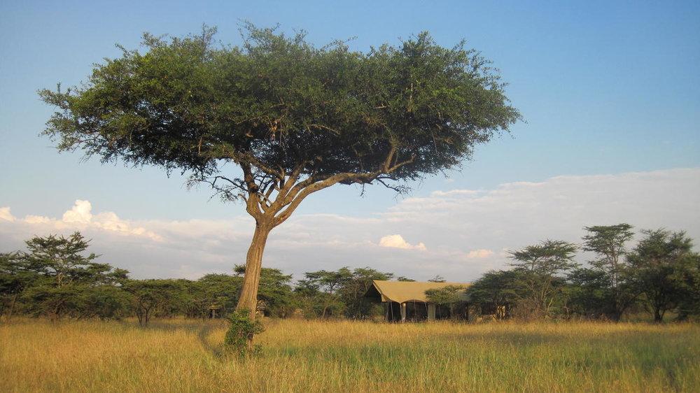 Vue extérieure Naboisho