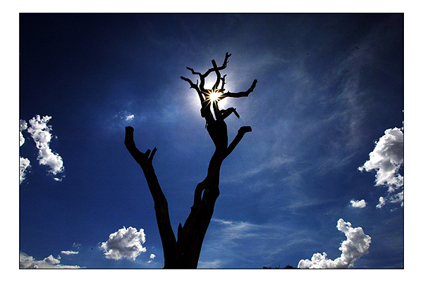 Safari Expérience authentique avec les Himbas - paysage