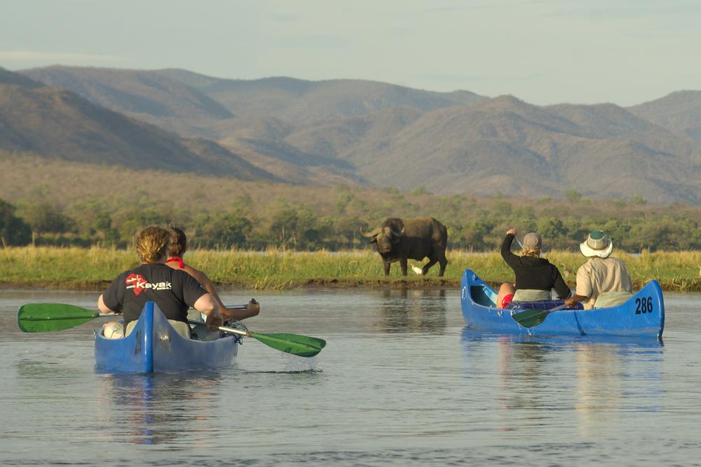 Safari en canoë sur le Zambèze