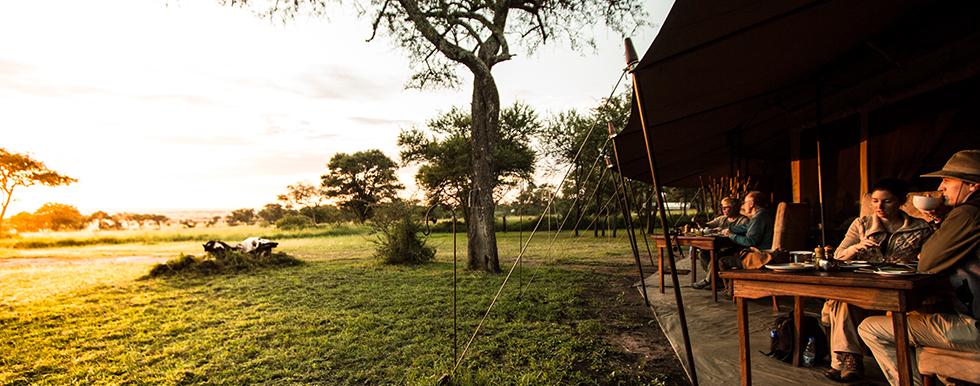 Safari Serengeti, Tarangire et Zanzibar en français - Sayari