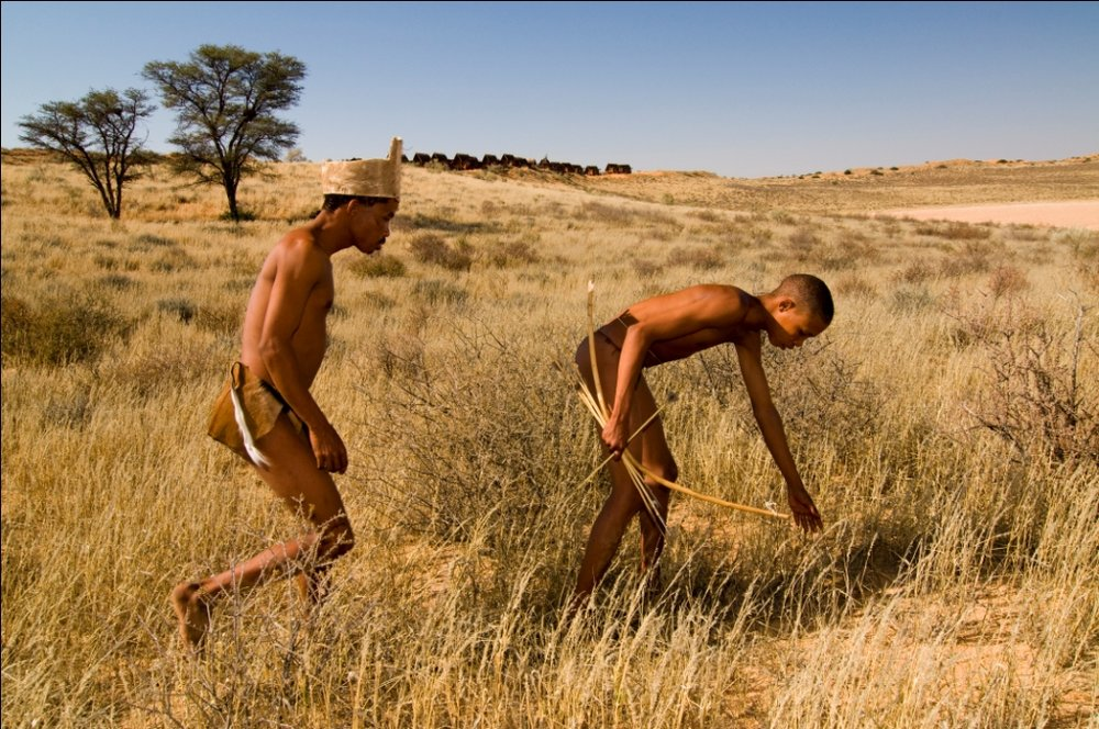 Bushmen au Xaus lodge