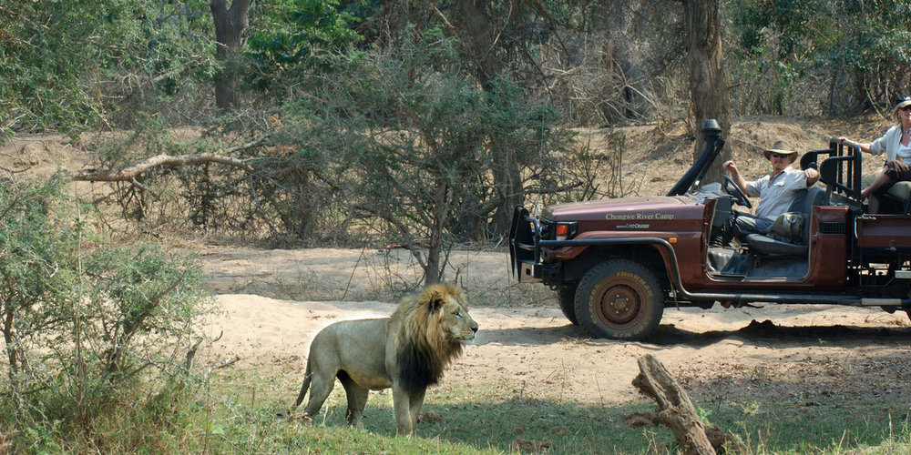 Safari en 4X4 Chongwe River camp