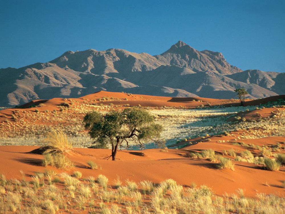 Safari Splendide Namibie - paysage Wolwedans