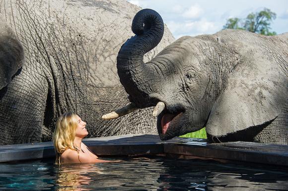 Safari Déserts et Plaines Africaines - Bain avec éléphants