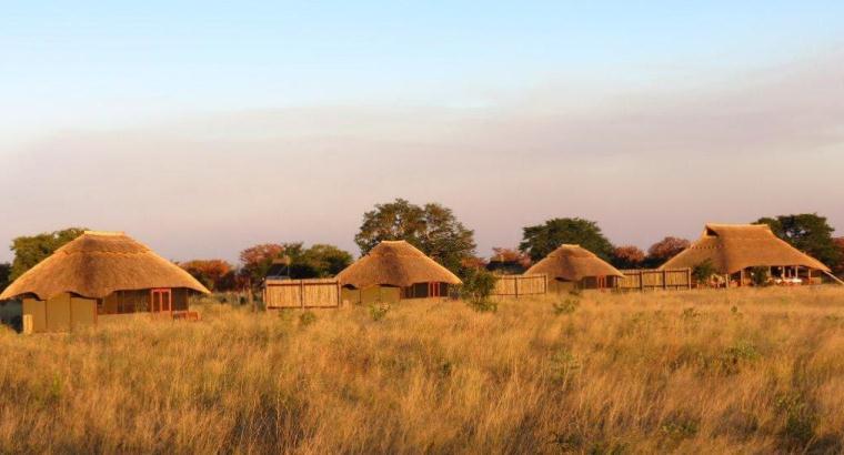 Vue du camp Hwange