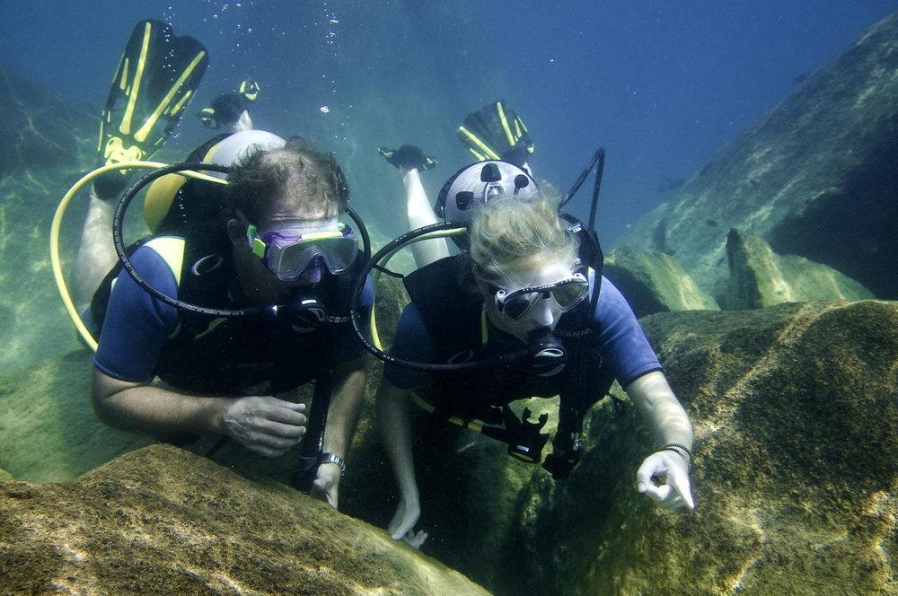 Plongée au Mumbo Island camp