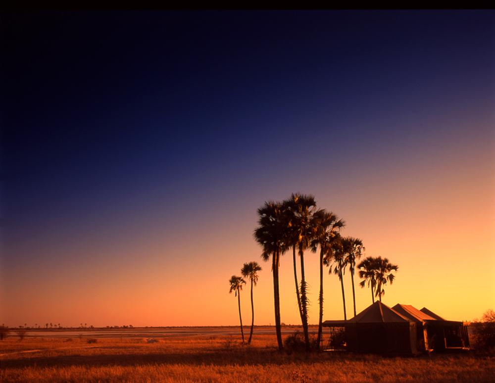 Safari en quad au Botswana - vue de Jack's camp