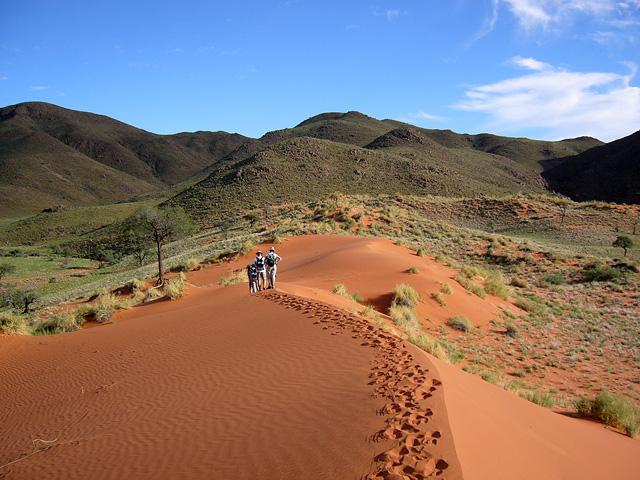 Trek dans le désert namibien - trek sur dune orangée
