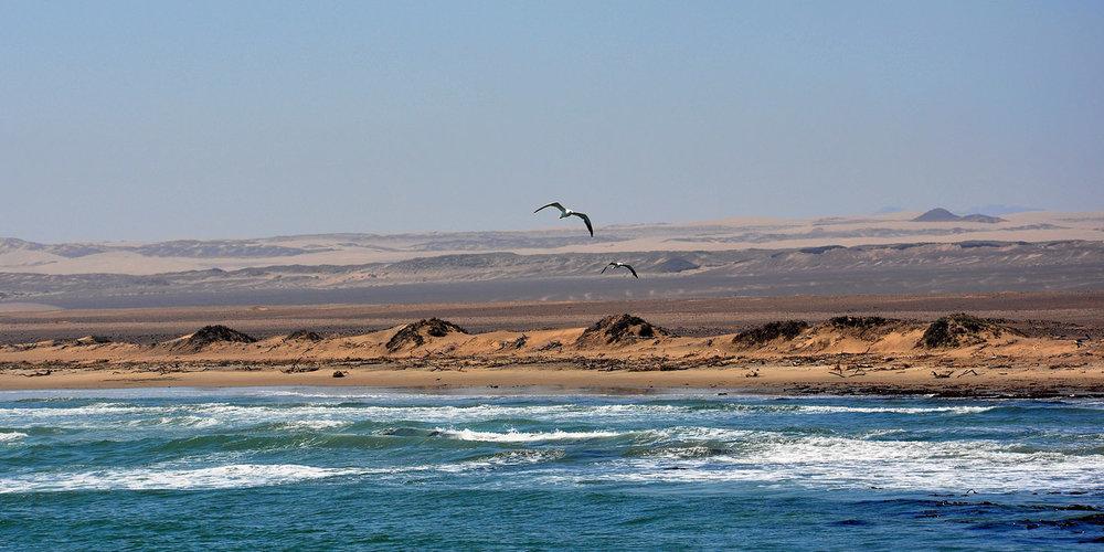 Safari la côte des Squelettes - vue de l'océan