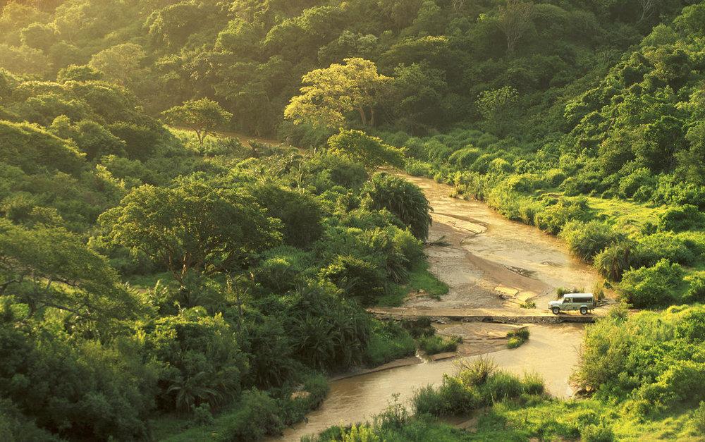 Arrivée au Rhino Ridge Safari lodge