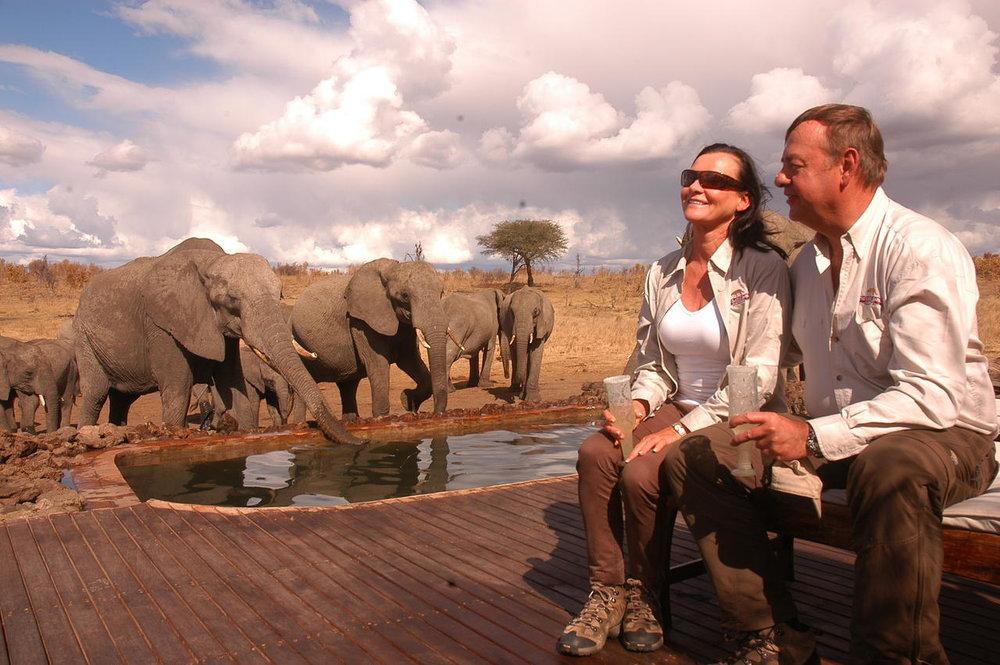 Safari Au Milieu des Eléphants - expérience avec les éléphant Somalisa camp
