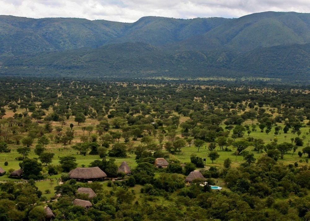 Safari le Meilleur de L'ouganda - vue de Semliki