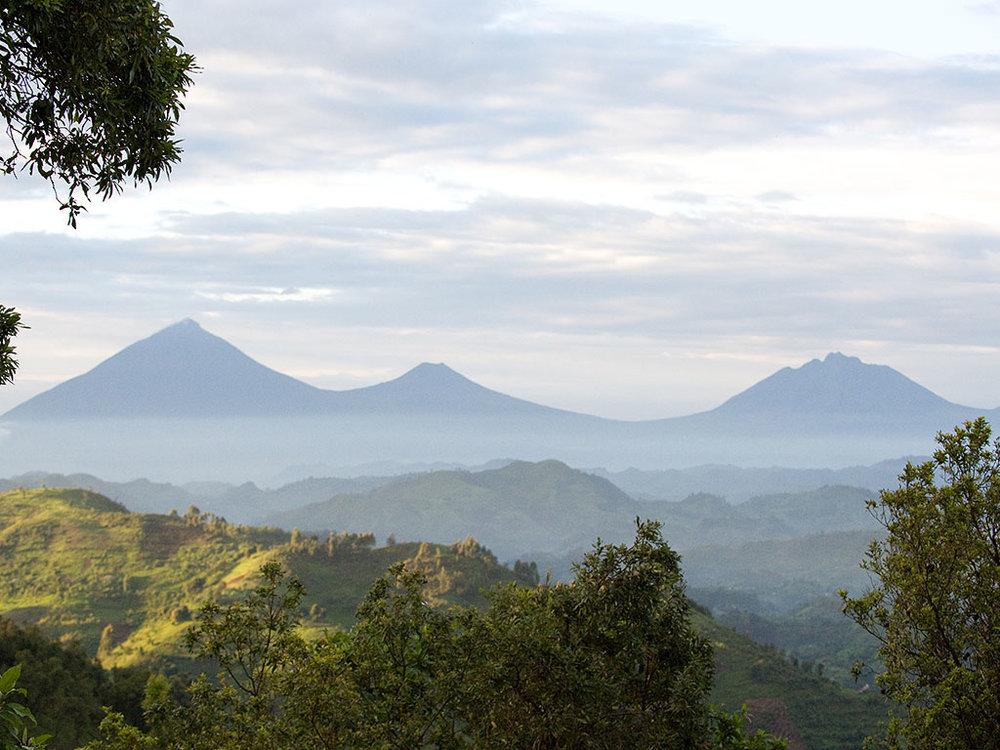 Safari le Meilleur de L'ouganda - vue depuis le Clouds Mountain Gorilla lodge