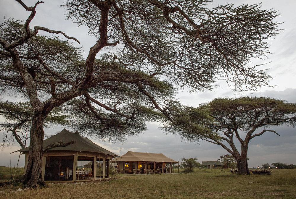 Camp de Namiri Plains