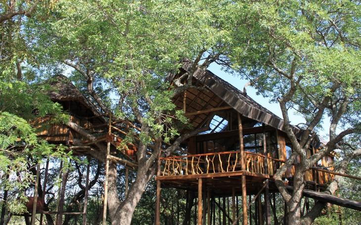 Cabane de Pezulu Tree House